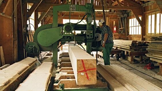 Węże dla tartaków i przemysłu meblarskiego